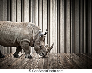 rhino in the house - rhino walk on abstract 3d architecture...