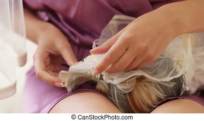 Combing dog - Home dog in wedding dress bride combs