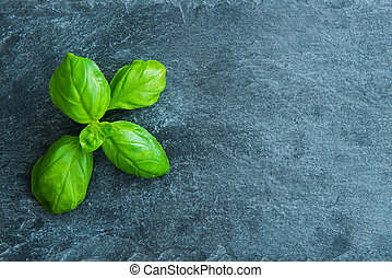 Closeup on basil on stone substrate