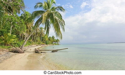 Starfish beach, Panama - Deserted Starfish beach on the...