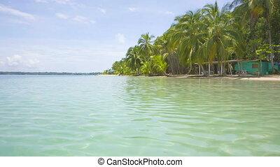 Starfish beach, Panama - Starfish beach on the archipelago...
