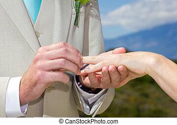 closeup, coppia, anelli, scambio