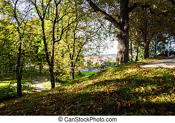 view from Vysehrad - View from the Basilica of St Peter and...