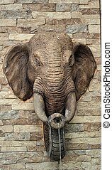 Elephant throws water on cement wall