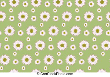 Daisy pattern - A pattern of a daisies on a green background