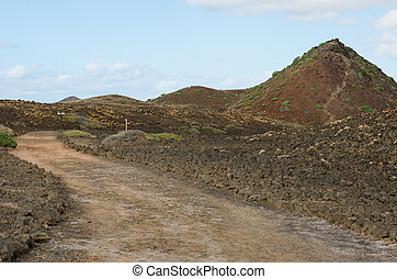 Walking on the island of Lobos - Paths of the island of...