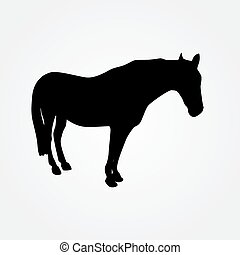 Horse - vector illustration - Horse - vector sketch...