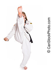 Martial Arts - Third degree female black belt martial artist...