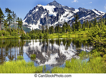 Picture Lake Evergreens Mount Shuksan Washington USA -...
