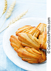 wholegrain Madeleine on a blue background tinting selective...