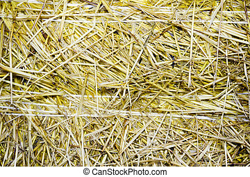 background of close-up bale of straw