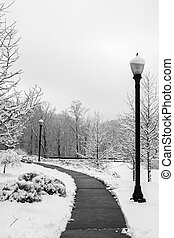 Snow Day - Sidewalk with streetlights cleared of snow.