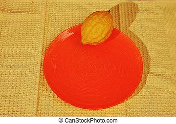 Ritual etrog - Jewish holiday of Sukkot. Ritual fruit -...