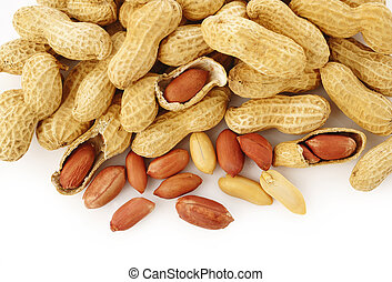 Peanut seed on white background