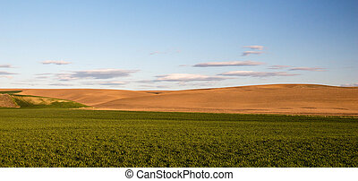 Palouse country - A view of southeastern Washingtons Palouse...