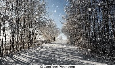 Winter road on a sunny frosty day w