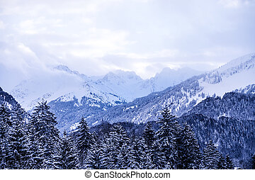 mountains in the alps - mountains an trees in the bavarian...