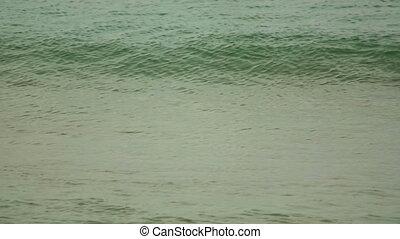 Ocean waves near tropical beach