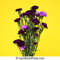 Floral arrangement isolated over a yellow background