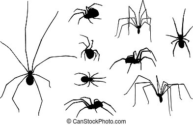 spiders - set of spiders