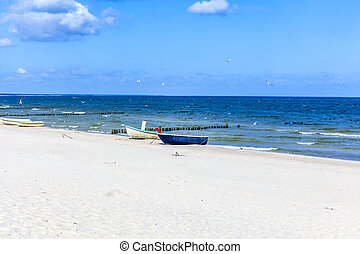 birds flying at the beach with boat