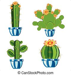 Cactuses in pot - Much cactuses in pot on white background...