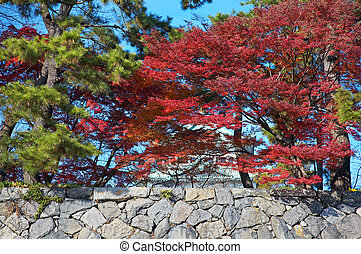 Stone wall with trees - Stone wall of Nagoya Castle in Japan