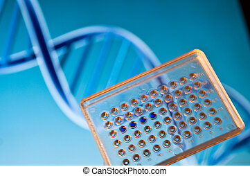 DNA testing. - DNA testing in the laboratory. Well plate...