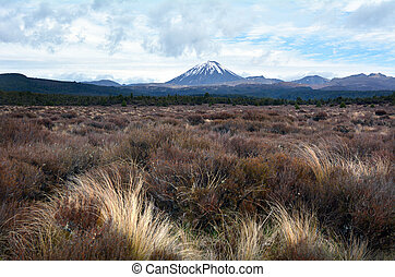Tongariro National Park - Mount Ngauruhoe - NATIONAL PARK,...