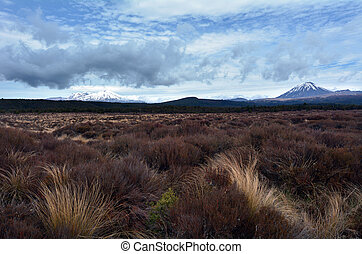 Tongariro National Park Landscape - NATIONAL PARK, NZ - NOV...