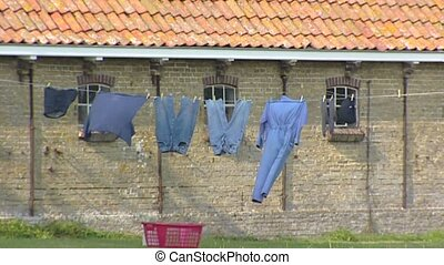 Laundry fluttering on clothesline in front of shed...