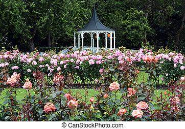 The Rose Garden of Palmerston North NZL - The Rose Garden of...