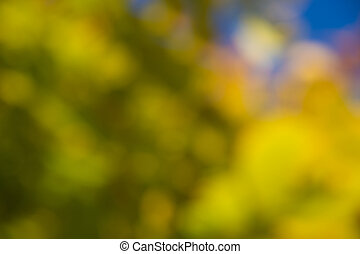 nature background with green, yellow, orange and blue