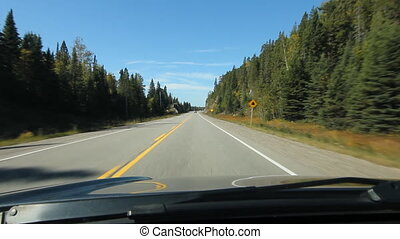 Sunny drive in Northern Ontario. - Sunny drive with conifers...