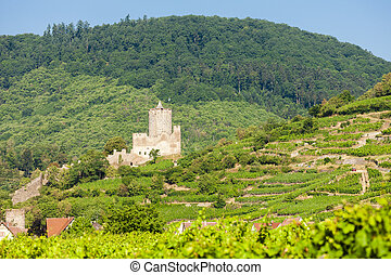 castle Kaysersberg with vineyard, Alsace, France
