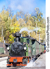 steam train, Steinbach - Johstadt, Germany