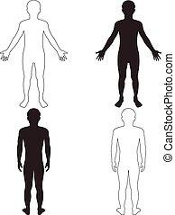 man body part in vector