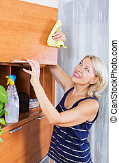 woman cleaning furniture at home - Housewife cleaning...