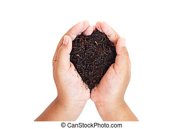 hands holding soil. Ecology concept