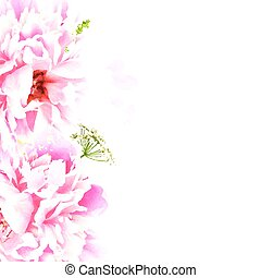 Border With Peony, Vector Illustration