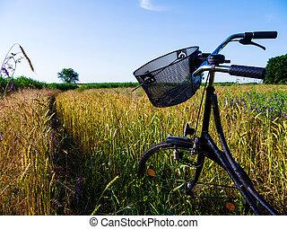 自転車, 風景