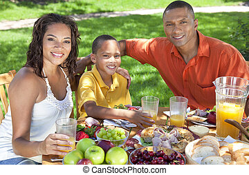African American Family Eating Healthy Food Outside - A...