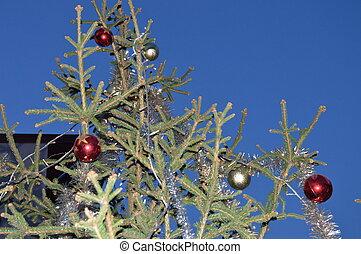 adornado, árbol, navidad, exterior