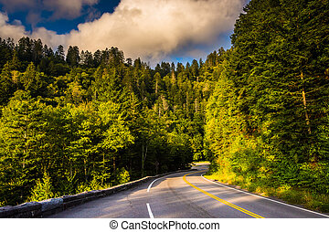 Newfound Gap Road, in Great Smoky Mountains National Park,...
