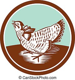 Prairie Chicken Retro Circle - Illustration of a prairie...