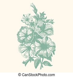 Vintage begonias - Vintage etching vector illustration of a...