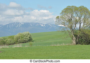 Mountains, views of the Western Tatras, snow-capped peaks...