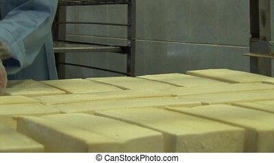 Plant for the production of cheese. Work corrects chees