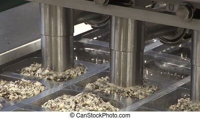 processing of fish products. - Plant for processing of fish...