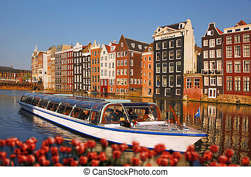 Amsterdam city with boats on canal against red tulips in...